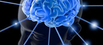 Hatha Yoga: Fa bene anche per ottenere un cervello più potente (e per usarlo meglio!)