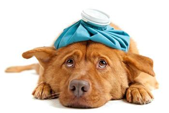 come far passare il mal di testa