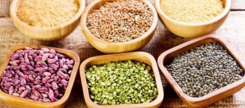 Acido Fitico: anti-nutriente o molecola protettiva? Ultime scoperte sui fitati