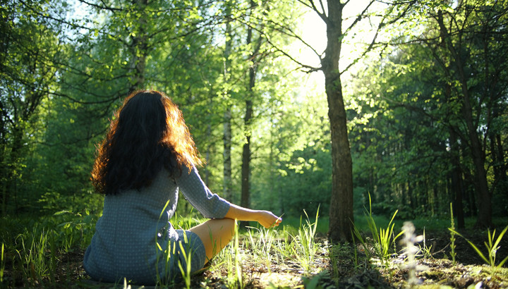 Forest Bathing: lo straordinario potere terapeutico di respirare nel bosco