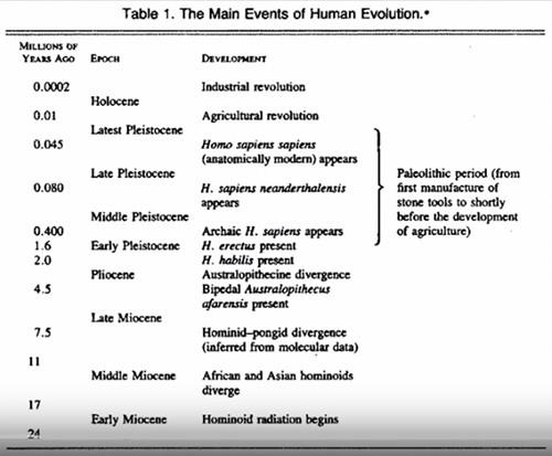 paleo dieta human evolution