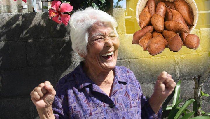 Sweet potatoes: The true secret of longevity of Okinawa's centenarians?
