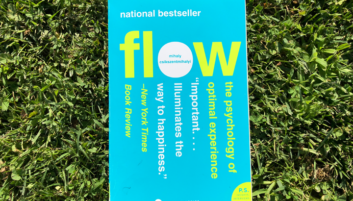 Flow: Il segreto (controintuitivo) per una vita piena e appagante
